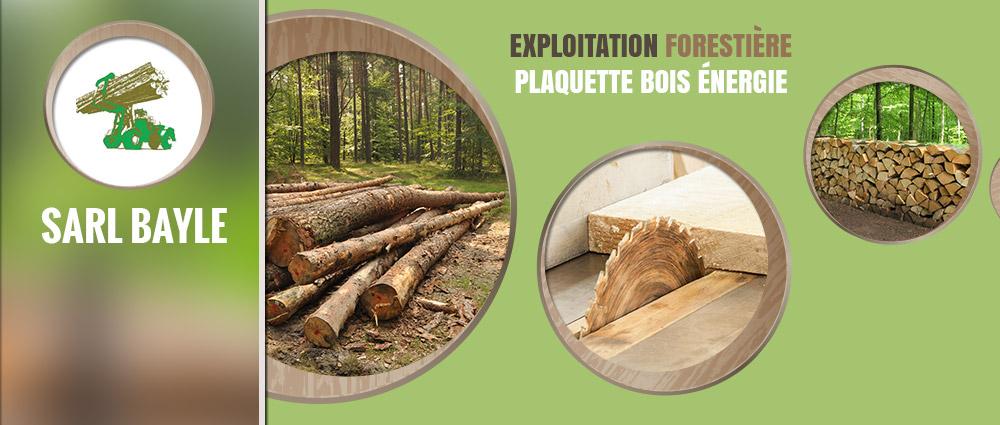 5e rencontre régionale Bois énergie